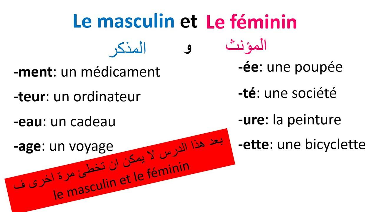 تعلم الفرنسية-- كيف نفرق بين المذكر والمؤنث في اللغة الفرنسية--Le Masculin Et Le Féminin