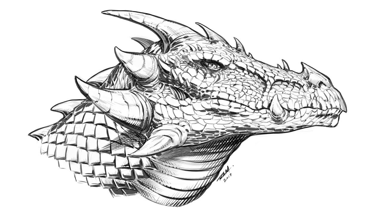How To Draw A Dragon Head Side View Narrated Youtube