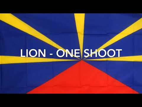 Lion - one shoot