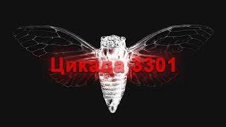 Интернет тайна: Цикада 3301