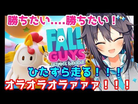 【Fall Guys】ただひたすらに頂点を目指して走る【にじさんじ/空星きらめ】