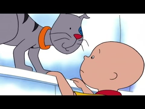 ■■ Caillou Full Episodes | Caillou's Pet ☼☼ Hour Long Compilation | Brand New HD! | Cartoon for Kids