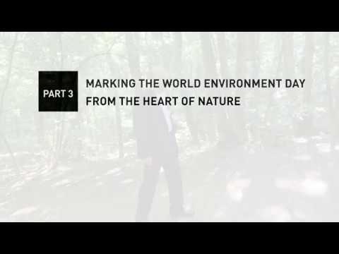 A Környezetvédelem Világnapja