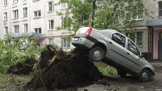Ураган в Москве /  Новости