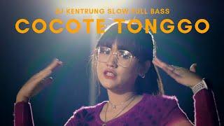 Download Happy Asmara - Cocote Tonggo (Official Music Video ANEKA SAFARI)