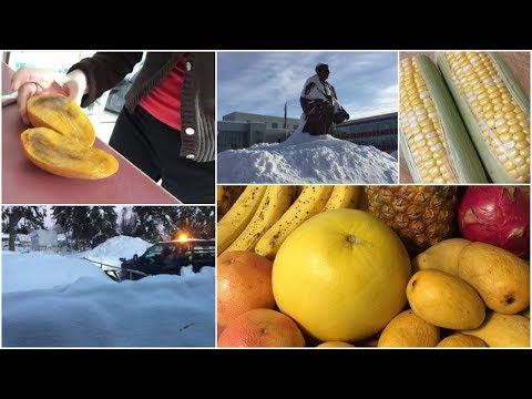 RAW VEGAN in Alaska:  what I ate today VLOG + SNOW, SNOW, SNOW...too much SNOW