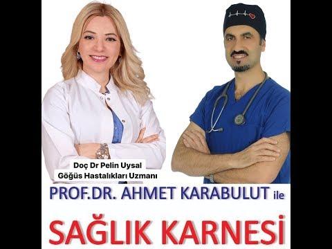 ÖKSÜRÜK VE ALERJİ (EN TEMEL BİLGİLER) - DOÇ DR PELiN UYSAL - PROF DR AHMET KARABULUT