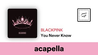 Blackpink You Never Know Acapella