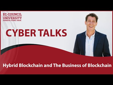 Hybrid Blockchain and The Business of Blockchain by David Freuden