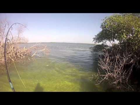 Fishing In Cuba - 02.2013