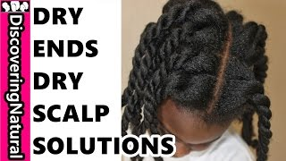Dealing with Dry Ends and Dry Scalp | Natural Hair