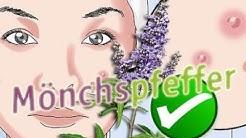 Mönchspfeffer Das passiert mit Akne Pickel und Periode