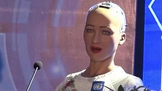Robot Sophia giao lưu trả lời các câu hỏi tại Diễn đàn 4.0