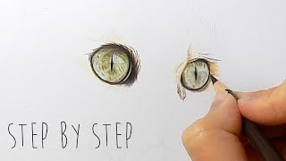Step by Step | How to draw, color realistic cat eyes with colored pencils | Emmy Kalia