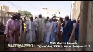 Njillu Ceerno Aamadu Tijjaani Bah RTA to Mbuur Febriyee 2017