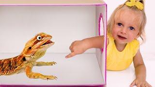 ماذا يوجد في الصندوق   أفضل سلسلة قصص تربوية وأخلاقية للأطفال