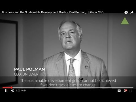 Business and the Sustainable Development Goals -  Paul Polman, Unilever CEO