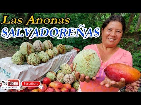 Temporada de Anonas en Carretera Litoral de el Salvador [YOUTUBERO]