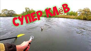 ЩУКА НА КАЖДОМ ЗАБРОСЕ рыбалка на щуку