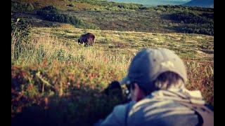 Alaska Grizzly Adventure