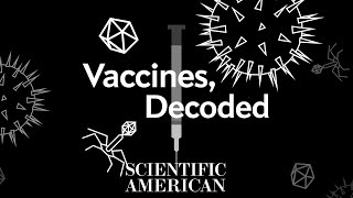 Decoded: How do vaccines actually work?