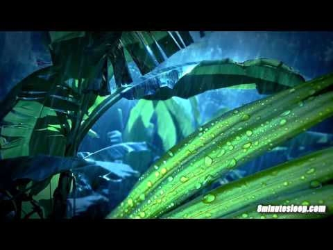 Jungle Rain 10 Hours | Sleep, Study, Read, Write or Relax | Nature White Noise