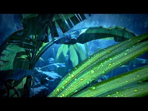 Jungle Rain 10 Hours   Sleep, Study, Read, Write or Relax   Nature White Noise