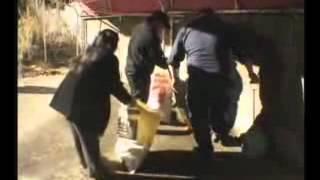 愛知県 刈谷市役所 市民協働課 国際交流協会が見殺しにしようとするので 刈谷市ブラジル人 ホームレス 救援 ボランティア