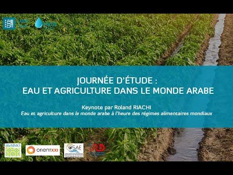Keynote : eau et agriculture dans le monde arabe à l'heure des régimes alimentaires mondiaux