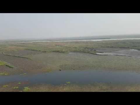 Harike pattan bird centuary view