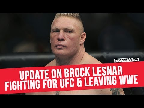 Update On Brock Lesnar Fight For The UFC & Leaving WWE