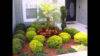 Gambar cover Wonderful Landscape Design Ideas Florida with Tropical Front Yard Pictures