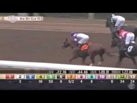 31.10.2014 Santa Anita Park (USA) 10.Race Allowace Optional Claiming - 1.407 m
