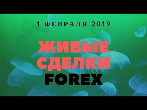 Прогноз форекс на 1 февраля 2019. Форекс сигналы. Аналитика Forex.