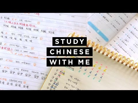 跟南非人一起学习中文 How I learn Chinese vocabulary 📚 #StudyWithMe