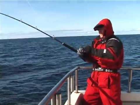 самый большой палтус пойманный на удочку видео