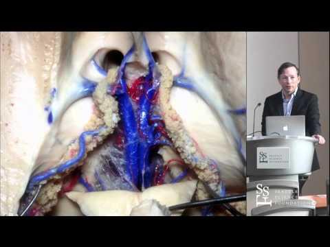 Anatomy of Thalamus by R. Shane Tubbs, PhD