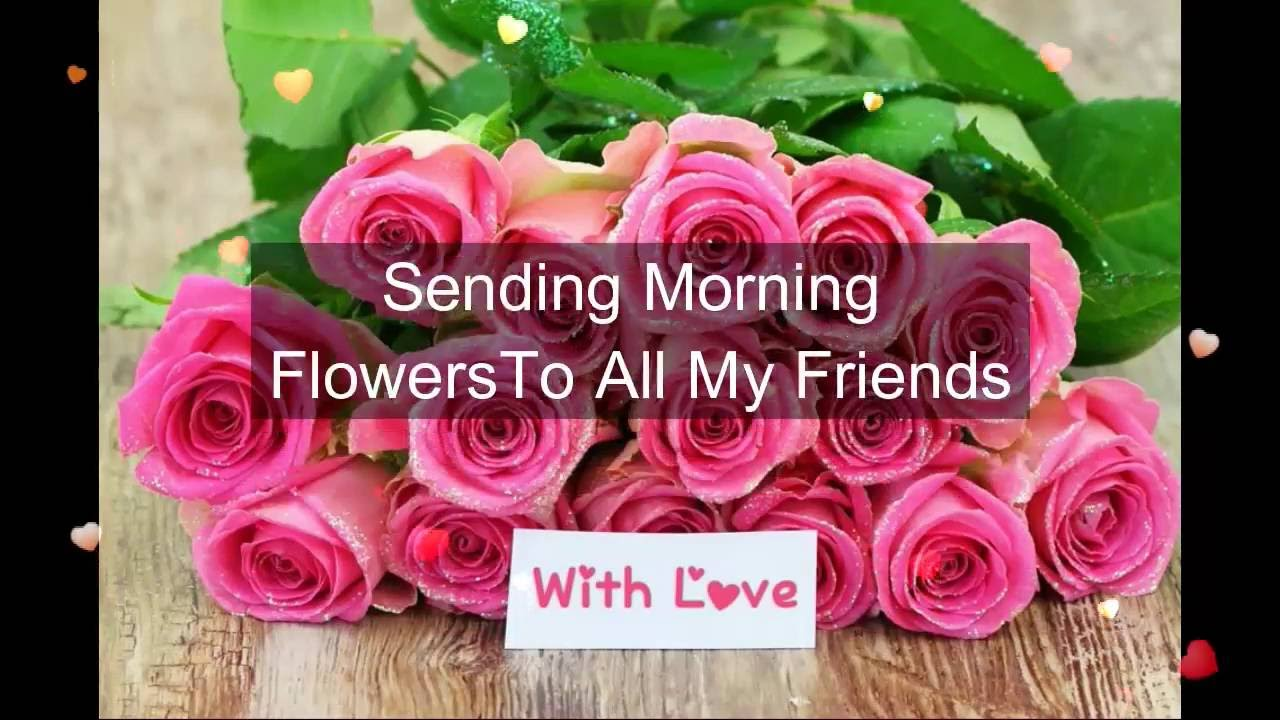 images of good morning quotes with flowers matatarantula