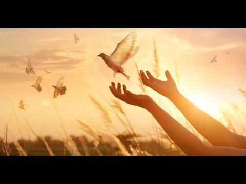 Fundo Musical Para Oração E Louvor | Santo Espírito Vem (Santo Espíritu Ven)