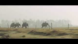 видео Южная Азия