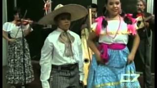 Son y Fandango mariachi tradicional de tarima La media calandria