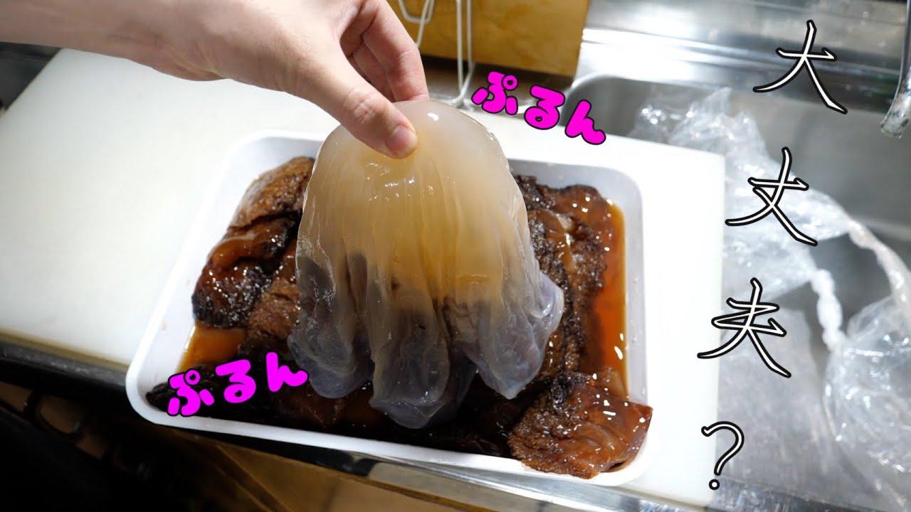 毒は無いの??激レアな【クラゲ】が手に入りました!特殊調理食材です。