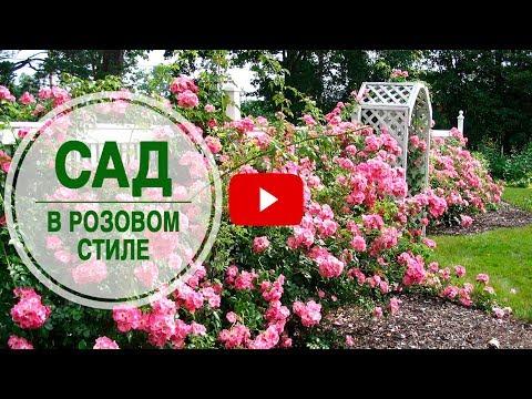 Необычная идея дизайна сада 🌟 Как создать сад в розовом стиле? ➡ Мастер класс от эксперта hitsadTV