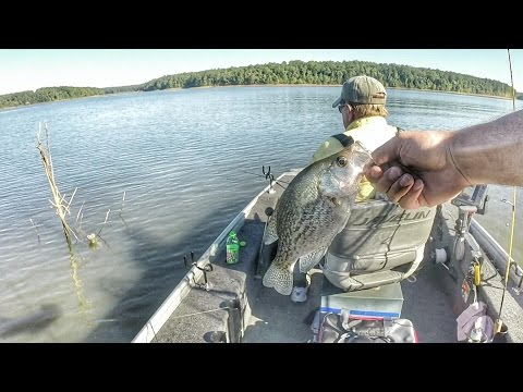 Crappie Fishing with Minnows - Clark's Hill Lake