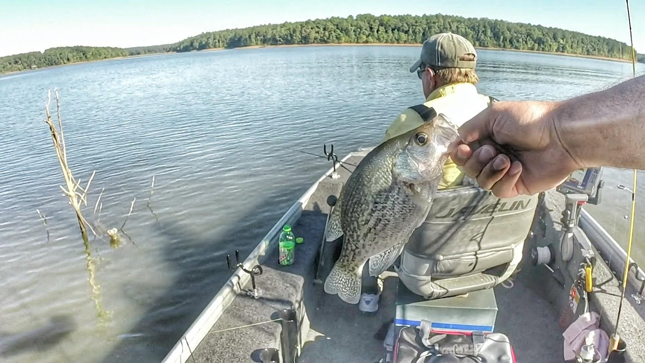 Crappie fishing with minnows clark 39 s hill lake youtube for Crappie fishing with minnows
