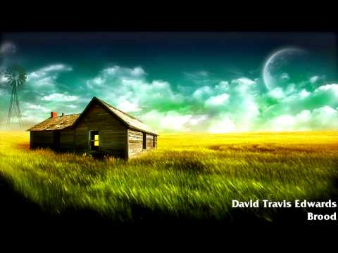 David Travis Edwards - Brood