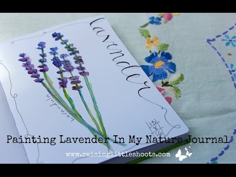 Painting Lavender In My Nature Journal