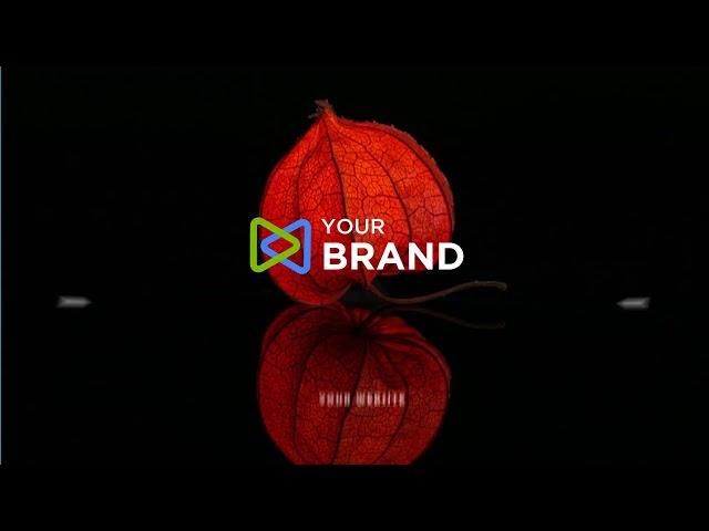 Logo Animation Design 24