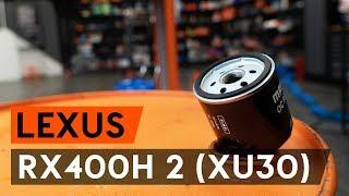 Kuinka vaihtaa Öljynsuodatin LEXUS RX (MHU3_, GSU3_, MCU3_) - ilmaiseksi video verkossa