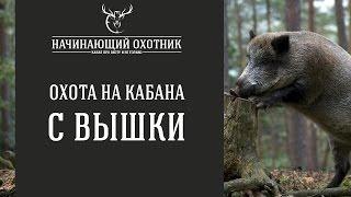 С ВЫШКИ НА КАБАНА / #ОХОТА НА КАБАНА С ВЫШКИ